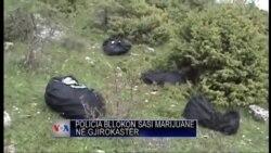 Bllokohen marihuanë në Gjirokastër