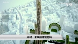 未来的摩天大楼会更多使用木材而不是钢筋水泥
