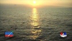 Gavayi: Tinch okeani sohillaridagi ekologik vaziyat