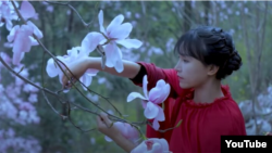 Li Ziqi, shown here in one of her YouTube videos, is one of China's most popular vloggers.