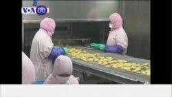 KFC và McDonald's ở TQ ngưng lấy hàng vì thịt hết hạn (VOA60)