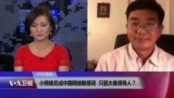VOA连线:小熊维尼成中国网络敏感词 只因太像领导人?