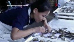 El gran retorno de las ostras