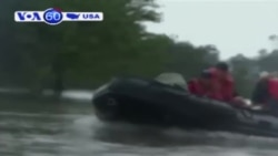 Houston chìm trong biển nước