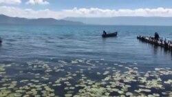 Локванот опстојува на мирни места и во води кои не се загадени