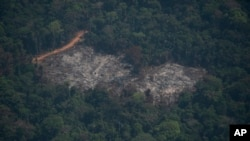 A destroyed area is seen in a area of the Menkragnoti indigenous reserve of the Kayapo indigenous group of Amazon rainforest in Altamira, Para state, Brazil, Wednesday, Aug. 28, 2019. Brazilian President Jair Bolsonaro said he has accepted four…