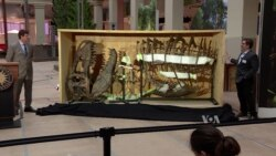 Museum of Natural History Provides Glimpse of New Dinosaur Display