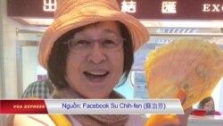 Nữ dân biểu Đài Loan bị chặn tại sân bay Việt Nam?