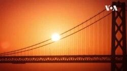 [미국을 만나다] 샌프란시스코