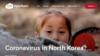 """오픈도어즈 """"북한 주민 '코로나 기근' 우려…관심·지원 필요"""""""