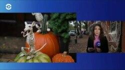 Как американцы планируют отмечать Хэллоуин?