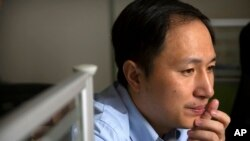 In this Oct. 10, 2018, photo, scientist He Jiankui looks at a computer screen while working at a lab in Shenzhen in southern China's Guandong province. China's government on Thursday, Nov. 29, 2018, ordered a halt to work by a medical team that…