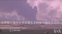 美指挥官: 伊拉克军队要持续施加压力直到敌人溃败