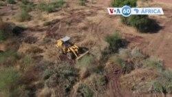 Manchetes africanas 1 dezembro: Sudão inicia abate de árvores para dar espaço a refugiados da Etiópia