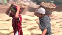 Birmada uşaq əməyinin istismarı