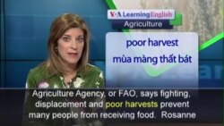 Anh ngữ đặc biệt: Sudan Food Insecurity (VOA-Ag)