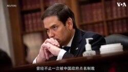 佛罗里达州联邦参议员马可·鲁比奥(共和党):推动《维吾尔人权法案》