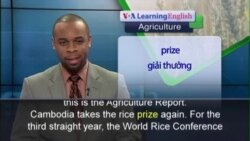 Anh ngữ đặc biệt: Cambodia Asian Rice (VOA)
