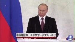 布热津斯基:普京的下一步更令人担忧