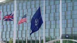 70 років НАТО: підсумки вашингтонського саміту та перспективи членства України в Альянсі. Відео