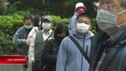 Đài Loan tìm cách tham dự Hội đồng Y tế Thế giới