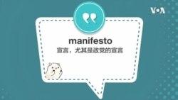 学个词 - manifesto