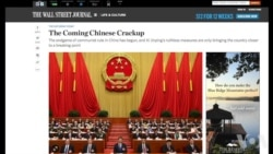 美学者:中国处于改革兴衰十字路口
