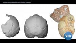 英语视频:考古新技术有助于断定人类最早何时走出非洲