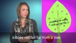 Thành ngữ tiếng Anh thông dụng: Apple does not fall far from the tree (VOA)