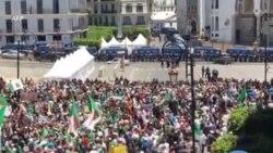 Arrestations de manifestants dans le centre d'Alger