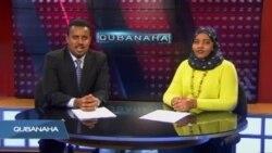 Qubanaha VOA, Dec 31, 2015