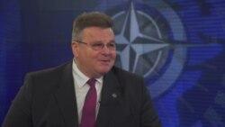 Глава МИД Литвы: НАТО переживает период испытаний на прочность