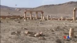 2016-03-28 美國之音視頻新聞: 敘利亞稱重奪帕爾米拉將帶來更多勝利