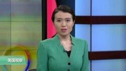VOA连线: 佩洛西:情报委员会主席已沦为总统傀儡