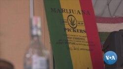 Thailand's Registration for Medical Marijuana Draws to a Close