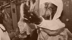 СПИД и лихорадка Эбола: информационная война