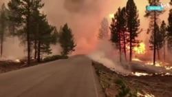 Пожары на Западе США