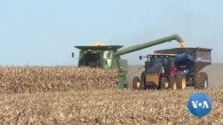 英语视频:美国农民在贸易战和弹劾案的不确定性中收获庄稼