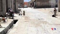 کوئٹہ میں آوارہ کتوں سے مقامی لوگ خوفزدہ
