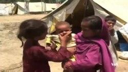 هشدار سازمان ملل متحد به افزایش روز افزون شمار پناهجویان در جهان