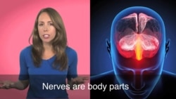 English in a Minute: To Have Nerve