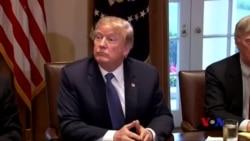 白宮:川普有權罷免特別檢察官
