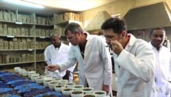 Kenyan Coffee Risks Losing Significance as Production Struggles