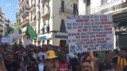 Les Algériens manifestent pour le 28ème vendredi consécutif