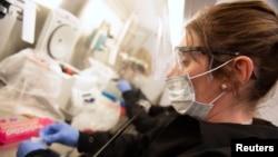 Nhà nghiên cứu Kylene Karnuth đang làm việc với các mẫu virus corona khi các nhà khoa học đang thử nghiệm xem liệu hydroxychloroquine có giúp ngăn ngừa hay giảm tình trạng nghiêm trọng của Covid-19 hay không.