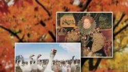 时事大家谈:感恩节特别节目:起源与传统