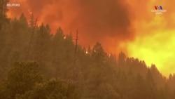 Անտառային հրդեհները շարունակվում են Կալիֆոռնիայի հյուսիսում
