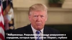 Традиционное еженедельное обращение президента США Дональда Трампа к стране