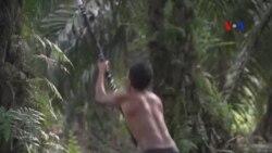 Indonesia chuẩn bị đối phó với mùa cháy rừng