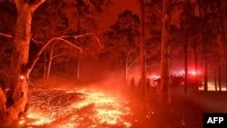 Cháy ở thị trấn Nowra tại tiểu bang New South Wales ngày 31/12/2019. Hàng ngàn du khách và cư dân bị buộc phải sơ tán.